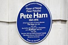 Blå platta i Swansea för Pete Ham royaltyfri bild