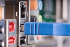 blå pluggad usb för kabel dator Royaltyfri Bild