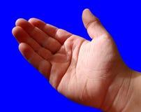 blå pojkehand Royaltyfri Bild