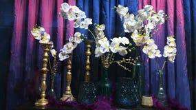 Blå purpurfärgad garnering för lös orkidé arkivfoto