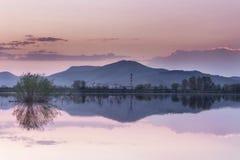 Blå reflexion för timmesjöspegel med purpurfärgad himmel och förgrundsbusken arkivbilder