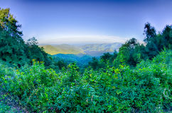Blå Ridge Parkway National Park Sunset scenisk bergsommar royaltyfri foto