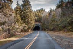 Blå Ridge Parkway tunnel bredvid huvudet för slinga för domstolsbyggnad för jäkel` s Royaltyfria Bilder