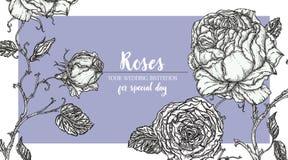 Blå Rose ram Royaltyfri Foto