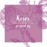 Blå Rose ram Royaltyfri Fotografi