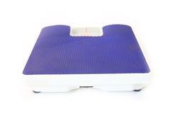 blå scale arkivfoto