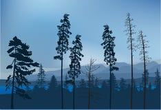 Blå sjö i bergskog Arkivbild
