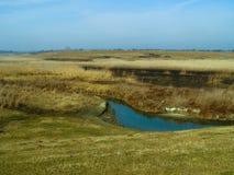 Blå sjö i de gula fälten Royaltyfria Bilder