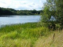 Blå sjö i den gröna skogen royaltyfria bilder