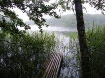 Blå sjö i den gröna skogen arkivfoton