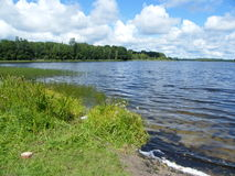 Blå sjö i den gröna skogen royaltyfri foto