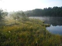 Blå sjö i den gröna skogen arkivbild