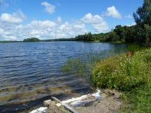Blå sjö i den gröna skogen arkivfoto