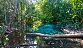Blå sjö i djungel Arkivbild
