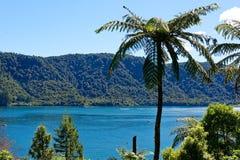 Blå sjö Tikitaupu nära Rotorua, Nya Zeeland arkivbild