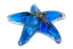 blå sjöstjärna Royaltyfri Fotografi