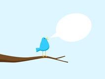 blå sjungande tree för fågel Arkivbilder