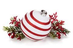 blå skugga för prydnad för julblommaillustration Arkivfoto