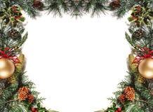 blå skugga för prydnad för julblommaillustration Royaltyfria Bilder