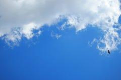 blå sky Royaltyfri Foto