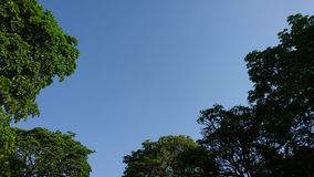 blå sky Arkivbild