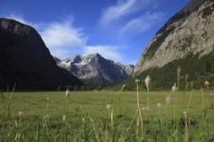blå sky för alps Royaltyfri Bild