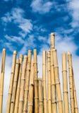 blå sky för bambu Arkivfoton