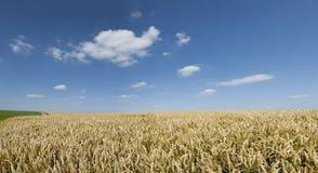 Blå sky för Weath liggande Arkivbild