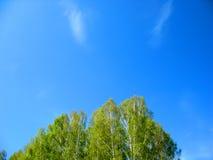 Blå sky och oklarheter fotografering för bildbyråer