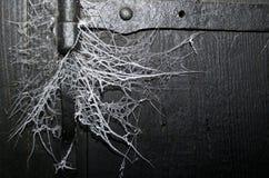 blå slapp spindeltonrengöringsduk Fotografering för Bildbyråer