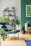 Blå soffa för bensin med kudden i vardagsrum med den gröna väggen, den bruna soffan och den stads- djungeln arkivbild