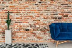 Blå soffa och modellfilt royaltyfri foto