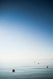 Blå sommarbakgrund för lodlinje Royaltyfri Fotografi