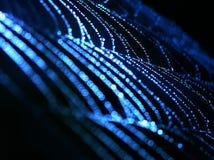 blå spindelrengöringsduk Arkivfoto