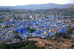blå stadsindi jodhpur rajasthan Royaltyfria Foton