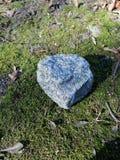 Blå sten på mossa royaltyfri fotografi