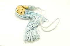 blå tassel Royaltyfri Fotografi