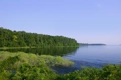 blå texas för liggande för skoggreenlake sikt arkivbild
