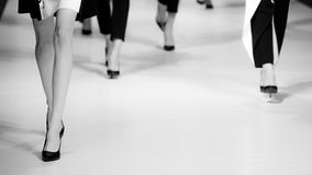 blå ton för show för modeexponeringsfotograf Royaltyfri Foto
