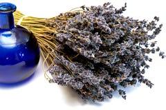 blå torkad dofta lavendel för flaska bukett Royaltyfri Foto