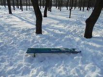 Blå träbänk i en snödriva Royaltyfri Fotografi
