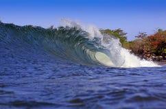 Blå tropisk kust som surfar vågen Arkivbild