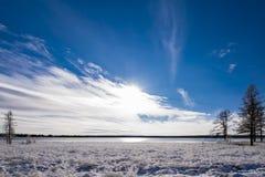 Blå tundra Royaltyfria Bilder
