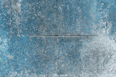 Blå vägg som är användbar som en bakgrund som täckas med mossa Arkivfoto