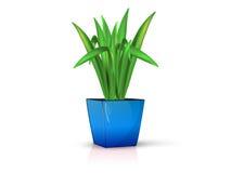Blå vas med blomman Royaltyfri Fotografi