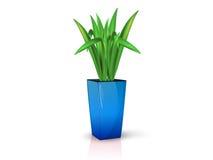 Blå vas med blomman Royaltyfri Bild