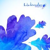 Blå vattenfärg målad ekbladbakgrund Fotografering för Bildbyråer