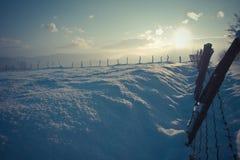 blå vinter Royaltyfri Bild