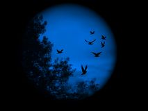 blå visionvärld Arkivbild