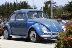 Blå Volkswagen Beetle sidosikt utskjutande gammal vw Klassisk tysk bil Royaltyfria Foton